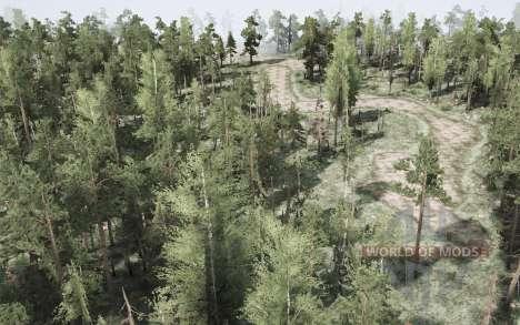 Forêt Dur pour Spintires MudRunner