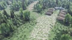 Tief in den Wäldern v2.0 für Spin Tires