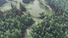 Green valley für Spin Tires