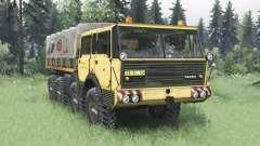 Tatra T813 TP 8x8 1967 v1.5 pour Spin Tires