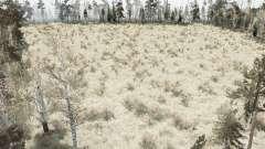 The Forest Marsh pour MudRunner