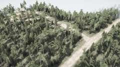 L'évolution de la forêt pour MudRunner