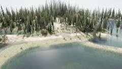 Forêt inondée 2 pour MudRunner