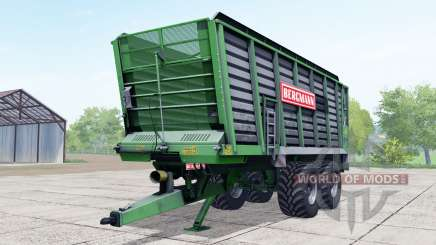 Bergmann ⱧTW 45 für Farming Simulator 2017
