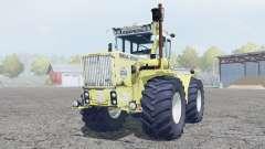 Raba-Steiger 250
