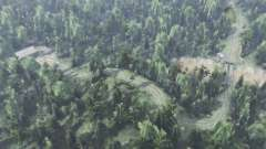 Grande forêt