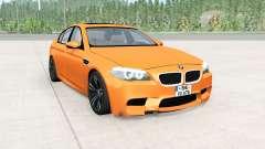 BMW M5 (F10) 2011 für BeamNG Drive