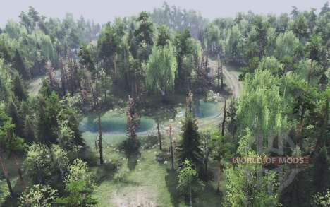 La forêt pour Spin Tires