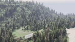 Quelque part dans les bois