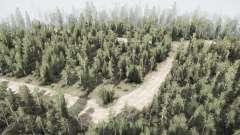Forêt v2.0 pour MudRunner