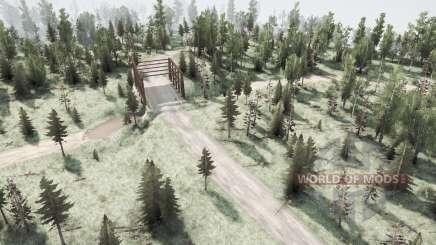 Wald für MudRunner