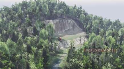 Wald für Spin Tires
