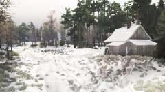 Früh Schnee 2 für Spin Tires