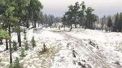 Début de la neige pour Spin Tires