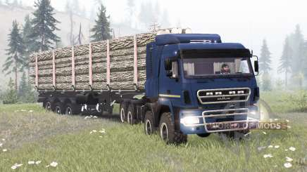 MAZ-6516B9-450-000 für Spin Tires