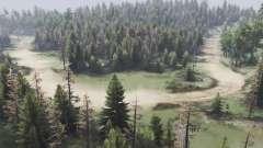La forêt de la vallée de pour Spin Tires