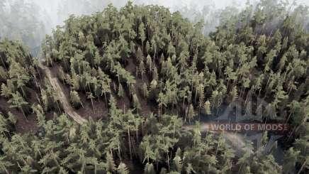 Amny forêt pour MudRunner