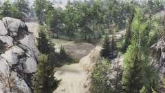 La forêt de la montagne pour Spin Tires