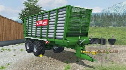 Bergmann HTW 45 la salle green pour Farming Simulator 2013
