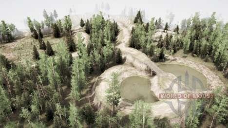 Forest watch 2 für Spintires MudRunner