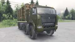 KamAZ-6ⴝ60 pour Spin Tires