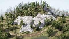 Forest. Rocks für MudRunner