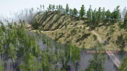 Nehmen Sie den Wald 11 für MudRunner