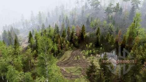 Collines forestières pour Spin Tires