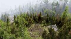 Forest Hills für Spin Tires