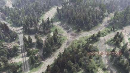 Plaines forestières pour Spin Tires