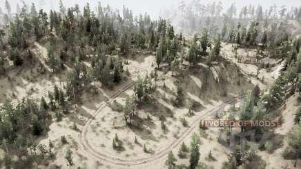 Wald Ձ für MudRunner
