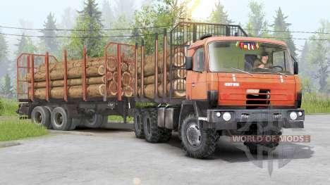 Tatra T815〡adass eigene Fracht für Spin Tires