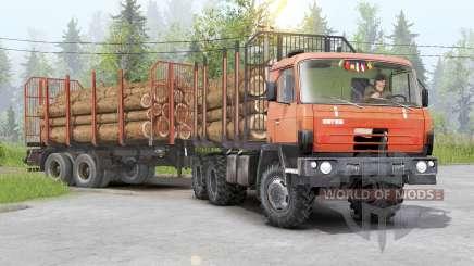 Tatra T815〡adass propre cargaison pour Spin Tires
