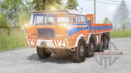 Tatra T813 8x8 für Spin Tires